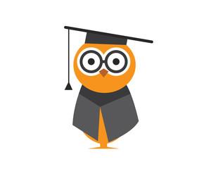 Modern Education Owl Logo - Bright Future Graduation Program