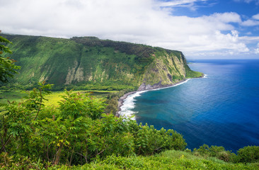 View from Waipio Valley Lookout on Big Island Hawaii