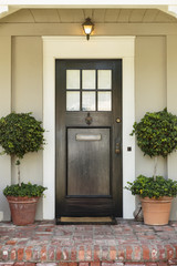 Front door, front view of a black front door with a mail slot and two plants