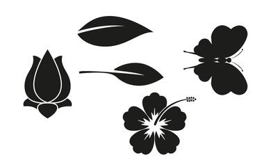 Schmetterling, Blüten, Blätter