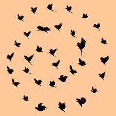 Birds and tornado.