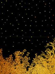 星空 金箔 夜空