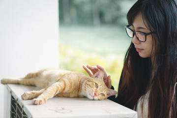 Asian girl playing with cat