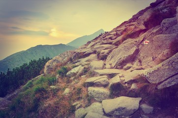 Summer mountain landscape at sunset in vintage style. Mountain trail in High Tatra, Slovakia.