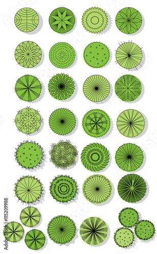 Set Of Treetop Symbols For Architectural Or Landscape Design