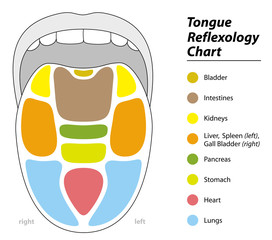 Tongue diagnosis chart with reflexology areas of the corresponding internal organs.