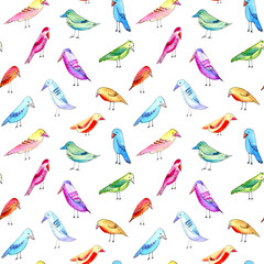 Seamless pattern with colorful bird. Watercolor hand drawn illustration.White background.Black contour.