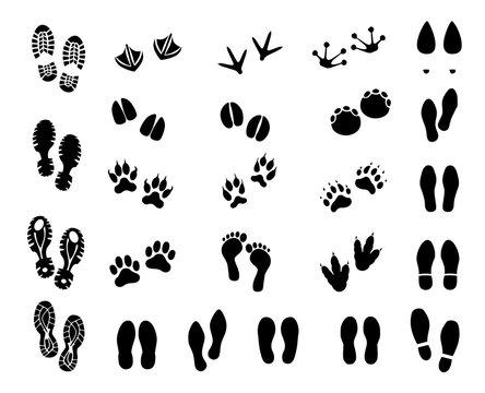 Footprint set vector