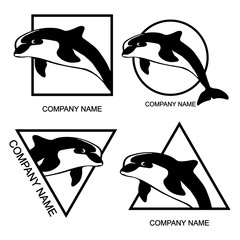 Set of dolphin logo