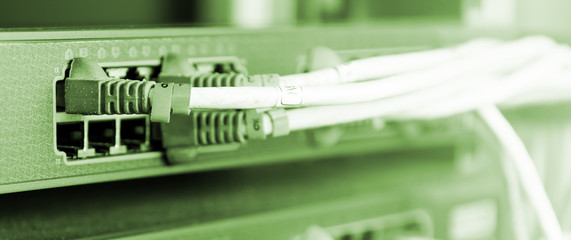 Close up UTP Cat5e Cable on network switch