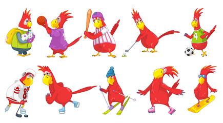 Vector set of funny parrots sport illustrations.
