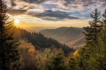 Foto op Plexiglas Bergen Great Smoky Mountains, autumn sunrise Tennessee