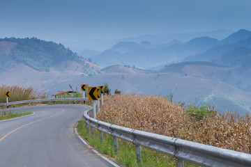 Curve road along corn field and fence with mountain scenery in country side, Thailand