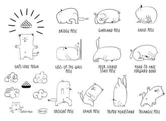 Yoga Cat line set