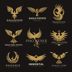 Eagle logo collection,bird logo,phoenix logo,vector logo template.