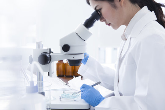Research student you are looking through the microscope