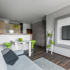 Small but functional modern apartment
