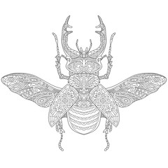 Zentangle stylized cartoon stag beetle (deer beetle, Lucanus cervus). Hand drawn sketch for adult antistress coloring book page, T-shirt emblem, logo, tattoo with doodle, zentangle design elements.