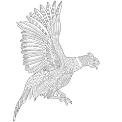 Zentangle stylized cartoon flying pheasant bird (cock, hen, phoenix). Hand drawn sketch for adult antistress coloring book page, T-shirt emblem, tattoo with doodle, zentangle design elements.