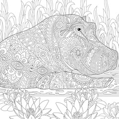 Zentangle stylized cartoon hippopotamus (hippo) swimming among lotus flowers and pond algae. Hand drawn sketch for adult antistress coloring book page with doodle, zentangle, floral design elements.