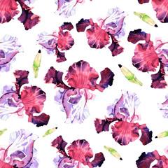 watercolor iris flower