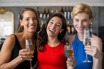 Happy female friends holding glass of champagne flute