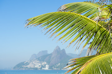 Ipanema Beach, Rio de Janeiro, Brazil scenic view with Two Brothers Mountain behind palm fronds