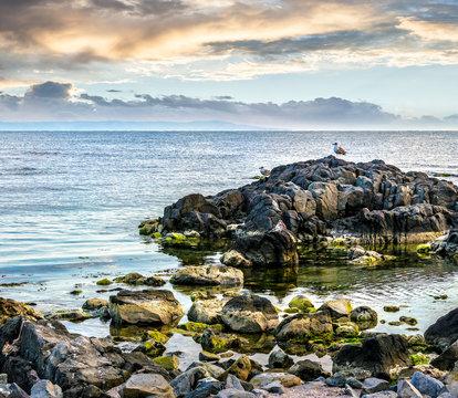 sea landscape on the rocky coast