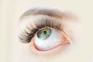 female green eye with long eyelashes