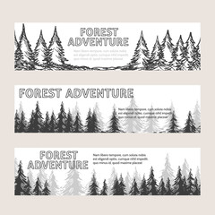 Monochromic horizontal banners with pine forest and text forest adventure. Vector illustration