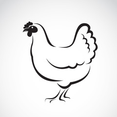 Vector image of a hen design on white background. Vector hen for