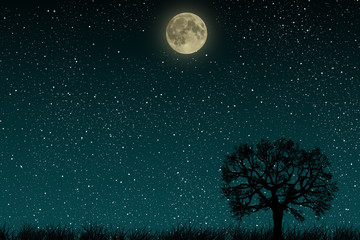 Beautiful blue night starry sky with full moon and lonely tree growing