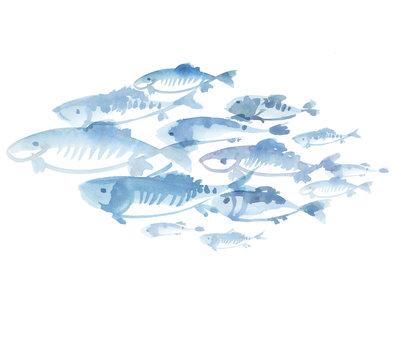 fish flock isolated on white background. watercolor hand drawn i