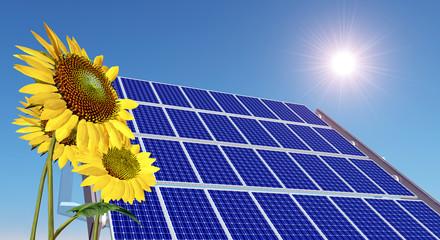 Solarmodul und Sonnenblumen