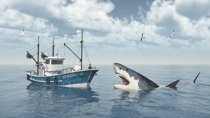 Fishing trawler and great white shark