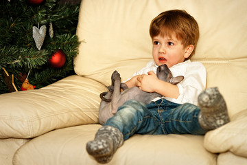 Small boy on the sofa at the Christmas tree