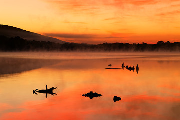 Foto op Canvas Donkergrijs Misty Sunrise at the Lake