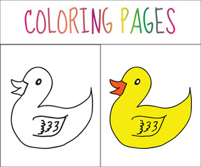 Coloring book page. Duck. Sketch and color version. Coloring for kids. Vector illustration
