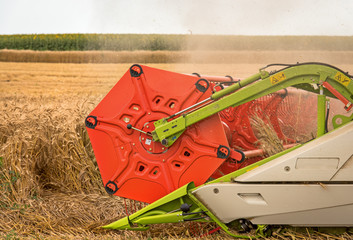 Fototapete - combine harvester close up