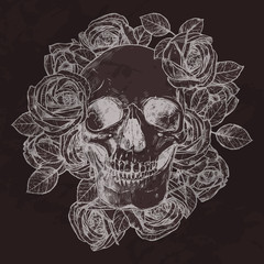 Skull And Roses On Chalkboard