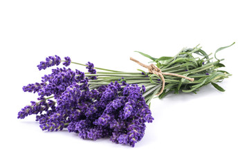 Lavender flowers bunch