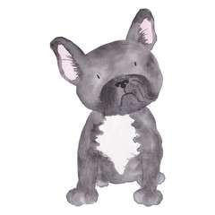 French Bulldog Illustration Dog Watercolor pet