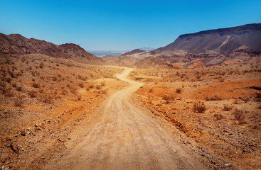 Foto op Plexiglas Droogte The road in desert. Southern Nevada, USA