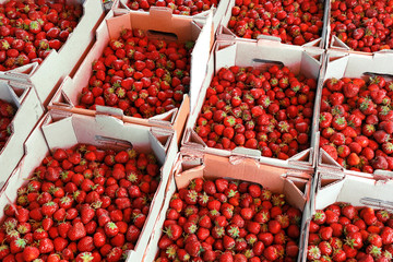 Organic strawberry in baskets on the market. High resolution product.
