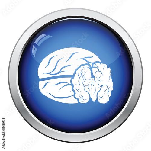 """Walnut icon"" Imagens e vetores de stock Royalty Free no ..."