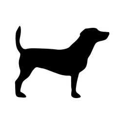 Vector illustration of dog.