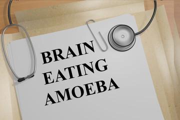 Brain Eating Amoeba concept