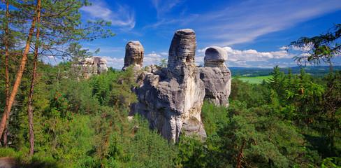 Fototapeta View of sandstone rockies and wood in cesky raj, bohemia, czech