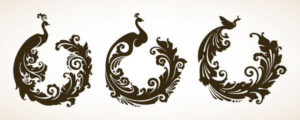 Vector set ornamental frames with decorative birds
