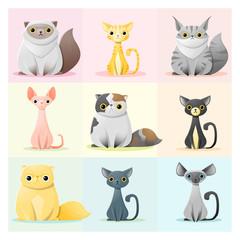 Set of cat family , vector , illustration